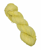 Baby Yellow 3005 French Market Sock